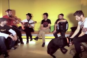 Les Hurlements D'Léo – « On Boira De La Bière » en session acoustique