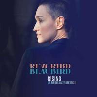 BlauBird - «Rising / La fin de la tristesse» : La chronique