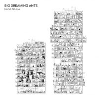 "Nana Adjoa - ""Big Dreaming Ants"" : La chronique"